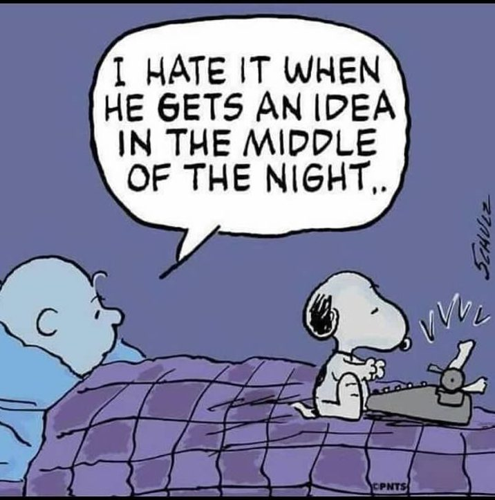 Snoopy's Night Idea
